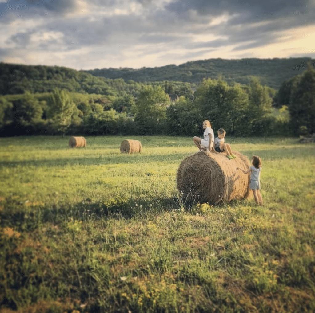 summer in france by Dan Alexander